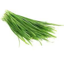 سبزی تره 1 بسته ( 50 گرم )