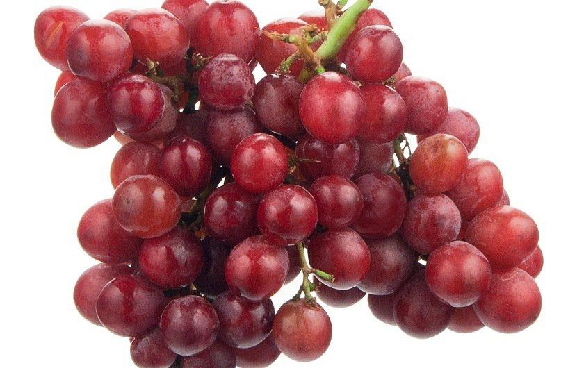 انگور قرمز