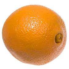 پرتقال تامسون شمال