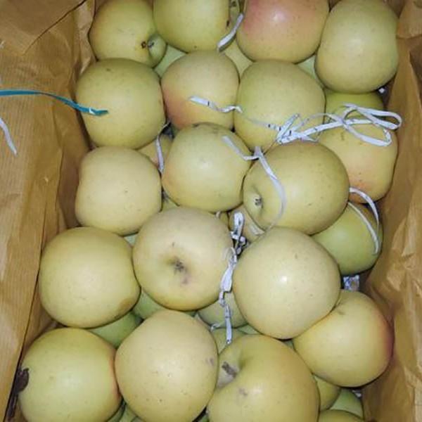 سیب سفید دماوند
