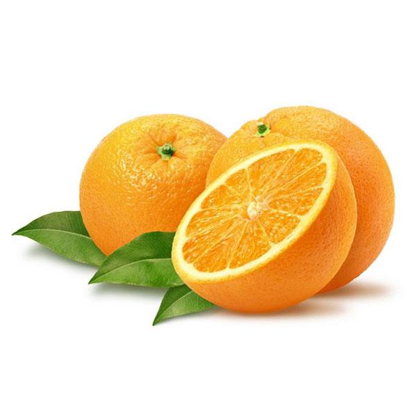 پرتقال شمال
